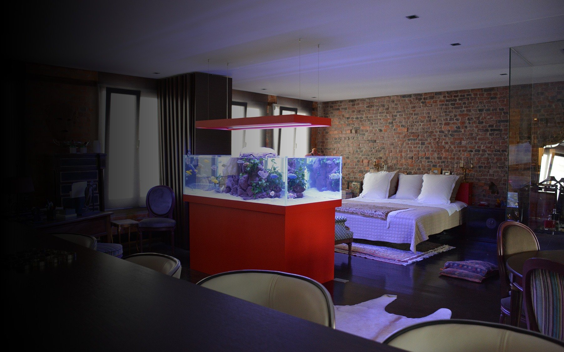 Aquarium sur mesure ouvert oc an d 39 interieur for Aquarium interieur