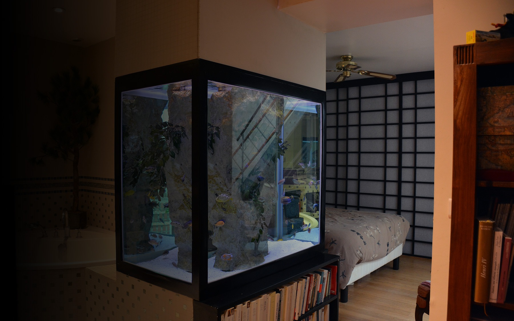 Aquarium sur mesure de cichlid s africains oc an d 39 interieur for Aquarium interieur