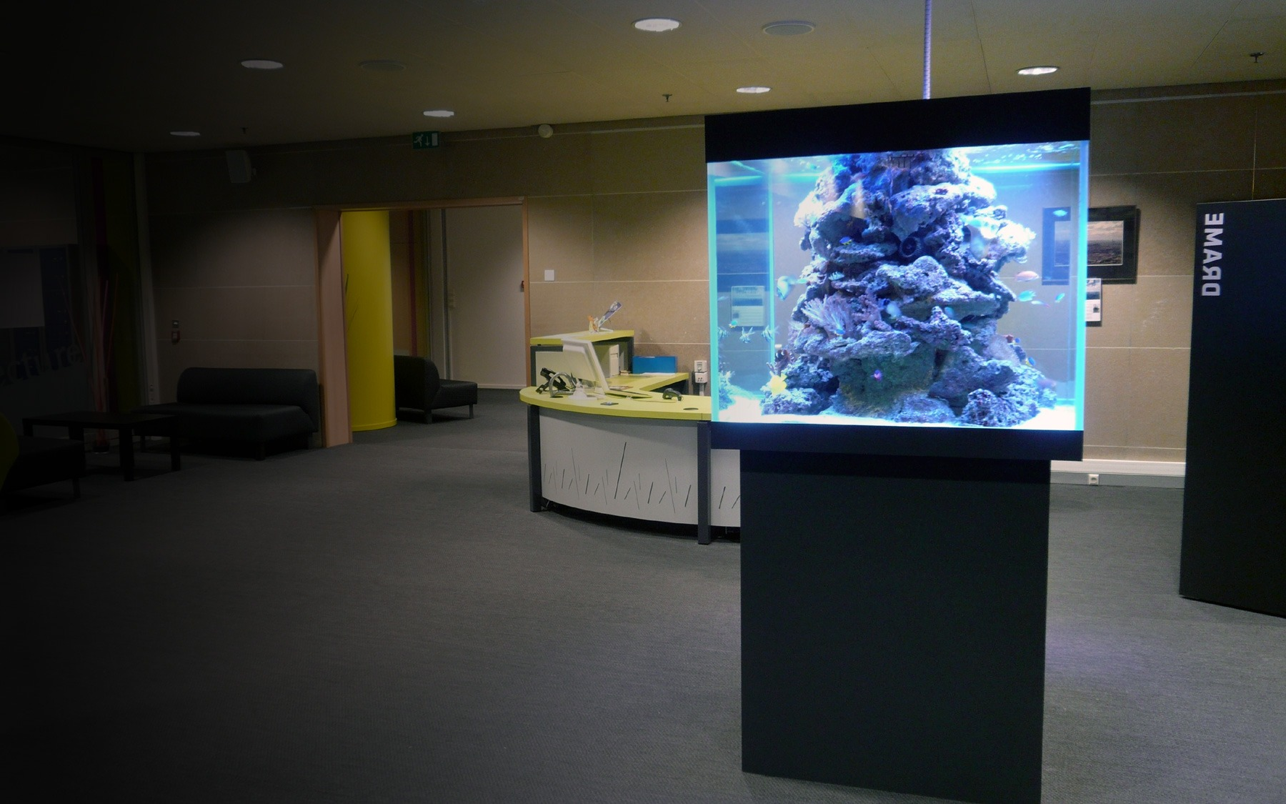 Aquarium sur mesure dans une m diath que oc an d 39 interieur for Aquarium interieur
