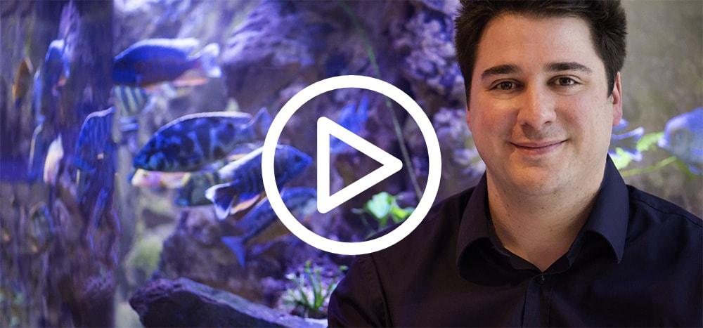 oceanint-video